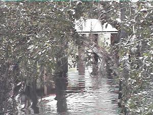 Myaka River Park Pavillion FL 70