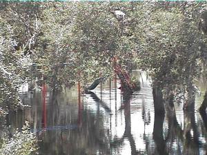 Myaka River Park Playground FL 70